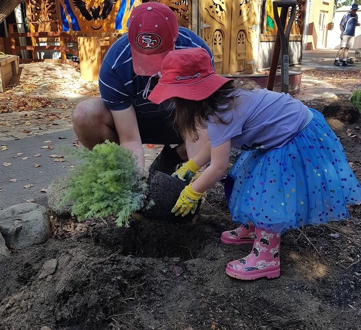 Gardening – Sow, Reap, Eat